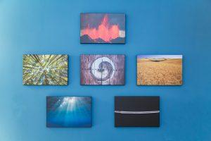 Bilder der 5 Elemente mit einem Yin/Yang Bild in der Mitte